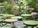 서울식물원 썸네일
