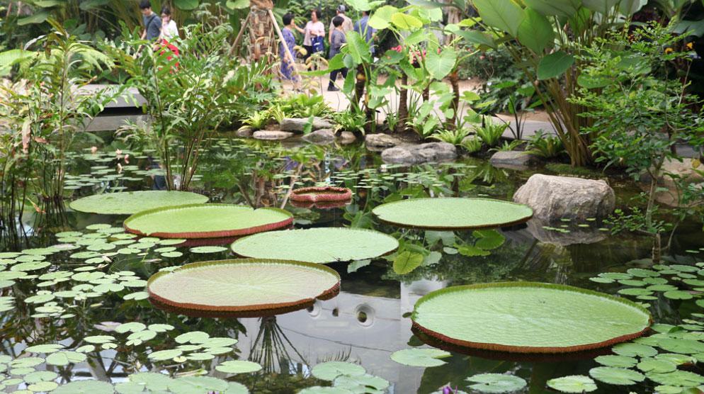 서울식물원 첫번째 사진
